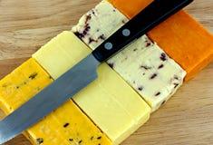 Трудный сыр Стоковое Фото