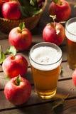 Трудный эль яблочного сидра Стоковая Фотография RF