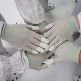 Трудовые руки показывая единство Стоковое Фото