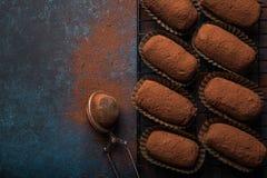 Трюфеля хлеба шоколада стоковое фото