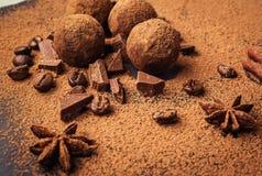 Трюфель шоколада, конфеты шоколада трюфеля с бурым порохом Домодельные свежие шарики энергии с шоколадом Трюфеля сортированные гу Стоковые Фотографии RF