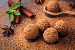Трюфель шоколада, конфеты шоколада трюфеля с бурым порохом Ho Стоковое Изображение RF
