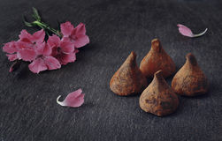 трюфеля изолированные шоколадом белые Цветки и конфеты Стоковое Фото