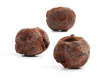 трюфеля изолированные шоколадом белые Стоковое Изображение RF