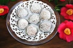 Трюфеля снежного кома отбензинивания шоколада и кокоса Стоковые Изображения RF