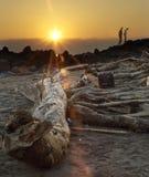 трясет заход солнца Стоковые Изображения RF