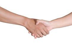 Трясти руки 2 мужских людей Стоковые Изображения RF