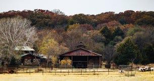 Тряхните дом и амбар при круглые связки сена деланные резервную копию к деревьям осени на холме с коровами в ручках в фронте - кр Стоковая Фотография