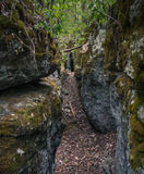 Тряхните след в вход пещеры Стоковое Фото