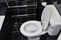 Туалет ванной комнаты Стоковое Изображение RF
