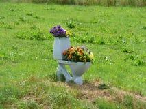 Туалет Стоковое Фото