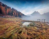 Туманная внешняя сцена на озере Antorno Красочное утро осени в доломите Альпах, национальный парк Tre Cime di Lavaredo, Италия, Е Стоковое Фото
