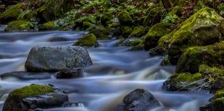 Туманная вода Стоковые Изображения RF