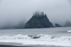 Туманная гора с лесом на seashore на пляже Rialto Олимпийский национальный парк, WA стоковые фотографии rf