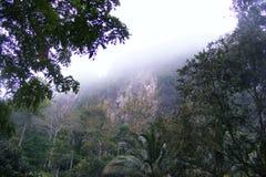 туманная гора Стоковая Фотография RF