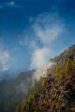 туманная гора Стоковые Изображения