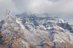 туманная гора Стоковые Фотографии RF