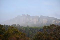 туманная гора Стоковая Фотография