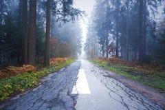 Туманная дорога асфальта леса с знаком прямой стрелки Стоковые Фото