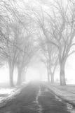 Туманная дорога кладбища стоковое изображение