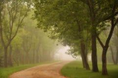Туманная дорога утра Стоковое Изображение RF