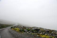 Туманная дорога Стоковые Фотографии RF