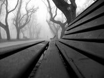 Туманная прогулка park's Стоковые Фотографии RF