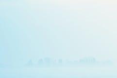 туманнейшая зима пейзажа Стоковые Изображения