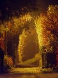 туманнейшая майна Стоковые Фотографии RF