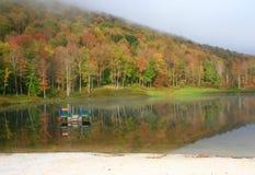туманнейшая сосенка озера холма Стоковые Фото