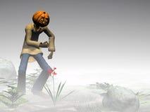 туманнейшая тыква jack halloween пущи Стоковая Фотография