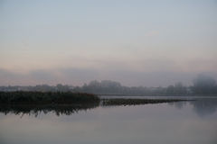Туманнейшее река Стоковое Фото