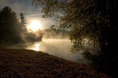 туманнейшее утро Стоковые Фото