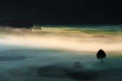 туманнейшее утро Стоковая Фотография RF