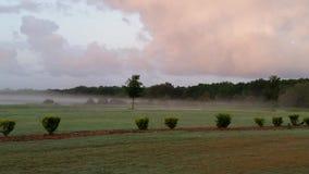 туманнейшее утро Стоковое фото RF
