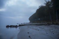 туманнейшее утро Стоковое Изображение