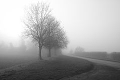 туманнейшее утро стоковое изображение rf