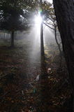 туманнейшие валы Стоковое фото RF
