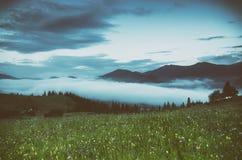 Туманнейший ландшафт утра Стоковое Изображение