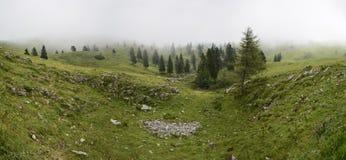 туманнейший ландшафт Стоковое Изображение