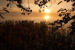туманнейший восход солнца озера Стоковые Изображения