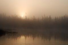 туманнейший восход солнца Стоковая Фотография RF