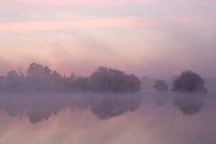 Туманнейший восход солнца стоковые изображения