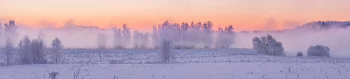 Туманнейший восход солнца зимы Стоковое Фото