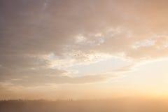 туманнейший восход солнца озера Стоковое Изображение