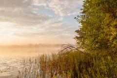 туманнейший восход солнца озера Стоковое Изображение RF