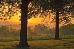 туманнейший восход солнца Стоковая Фотография