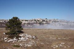 Туманнейший день на долине горы Стоковая Фотография