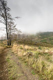 Туманнейший день Стоковые Фото