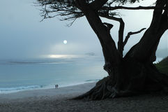 туманнейший заход солнца stroll Стоковые Изображения